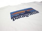 超貴重な90'sロゴ!!Patagonia(パタゴニア)からヴィンテージTEE入荷!