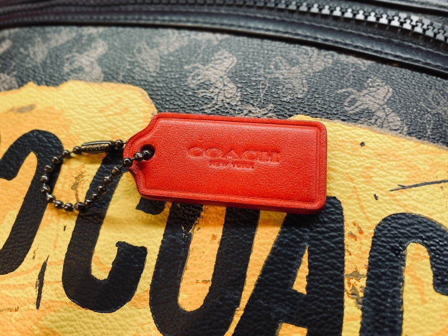 CARRYALL POUCH / クラッチバッグのF84738
