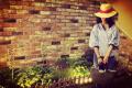 「夏物のパナマハット 」
