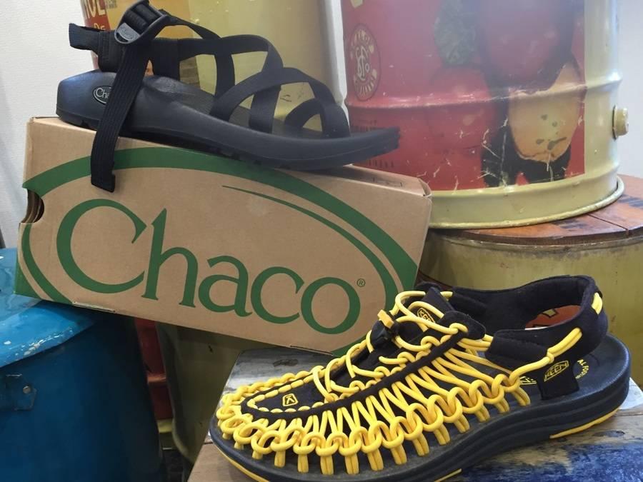 「chacoのチャコ 」