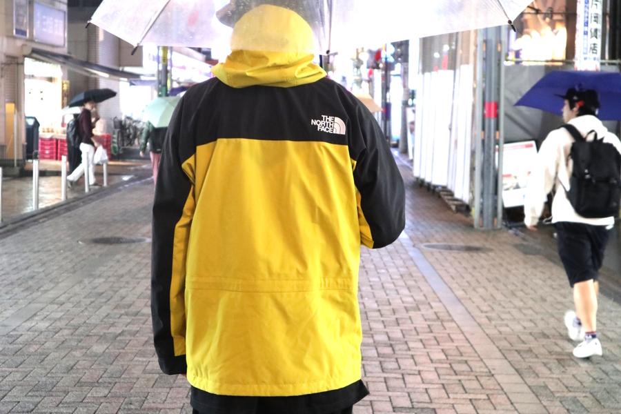 ザノースフェイスのMountain Light Jacket LY