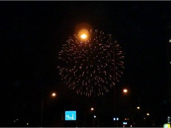 「花火大会の昭和記念公園 」