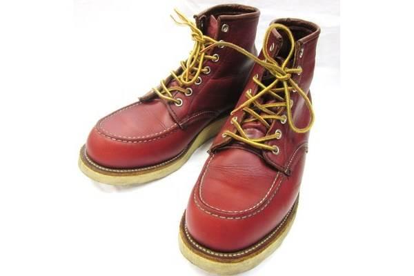 「ブーツのアイリッシュセッター 」