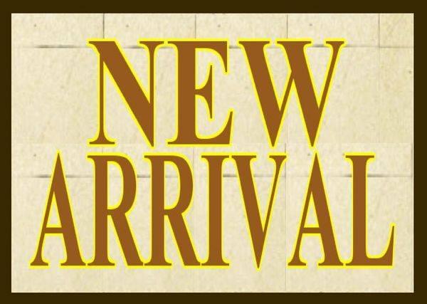 「新入荷のノースフェイス 」