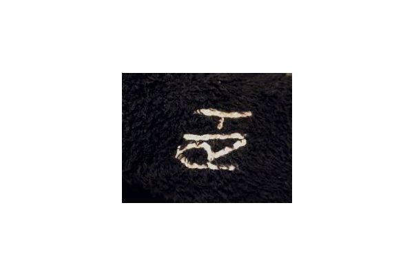 「橋本の買取 」