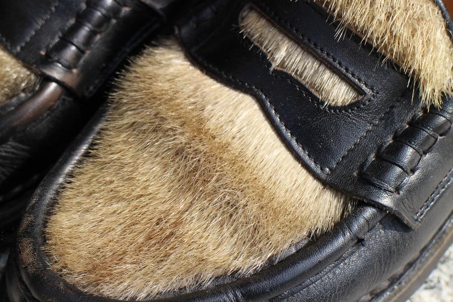 ランスフォックのアザラシ毛使用