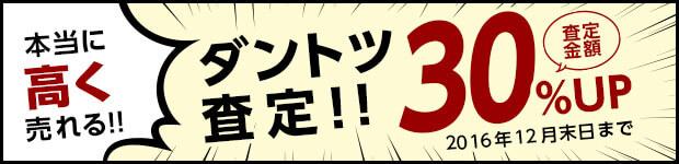ダントツ査定30%UPキャンペーン